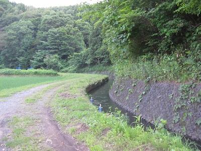 IMG_0726芋川用水